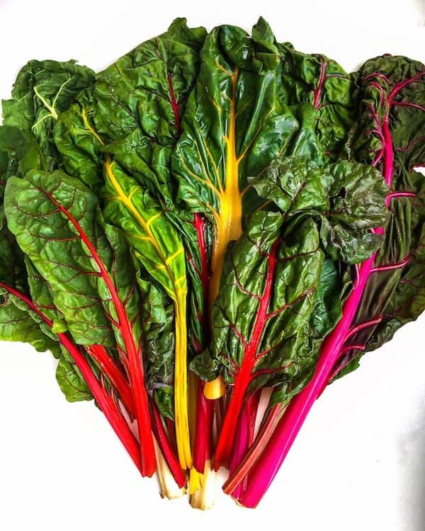 rainbow-chard-recipe