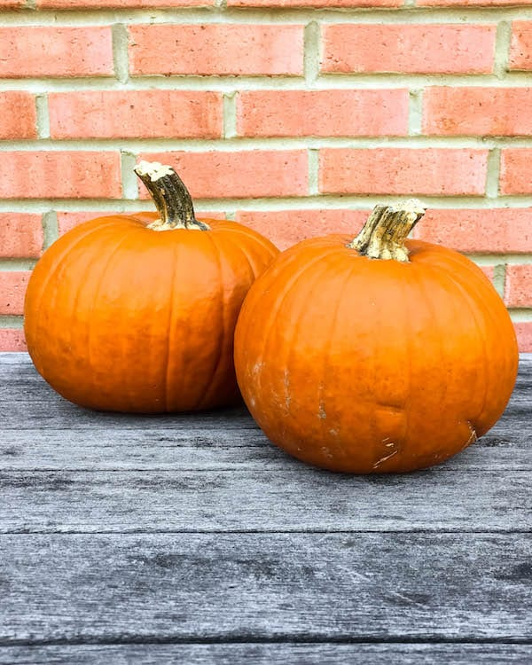 homemade-fresh-pumpkin-puree