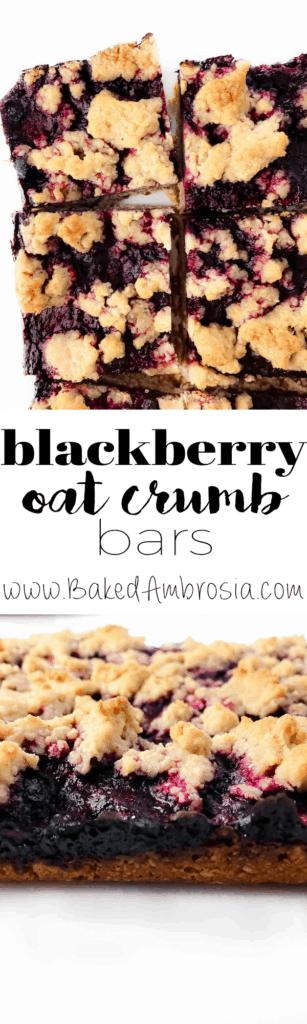 Blackberry Oat Crumb Bars (Gluten Free + Vegan)