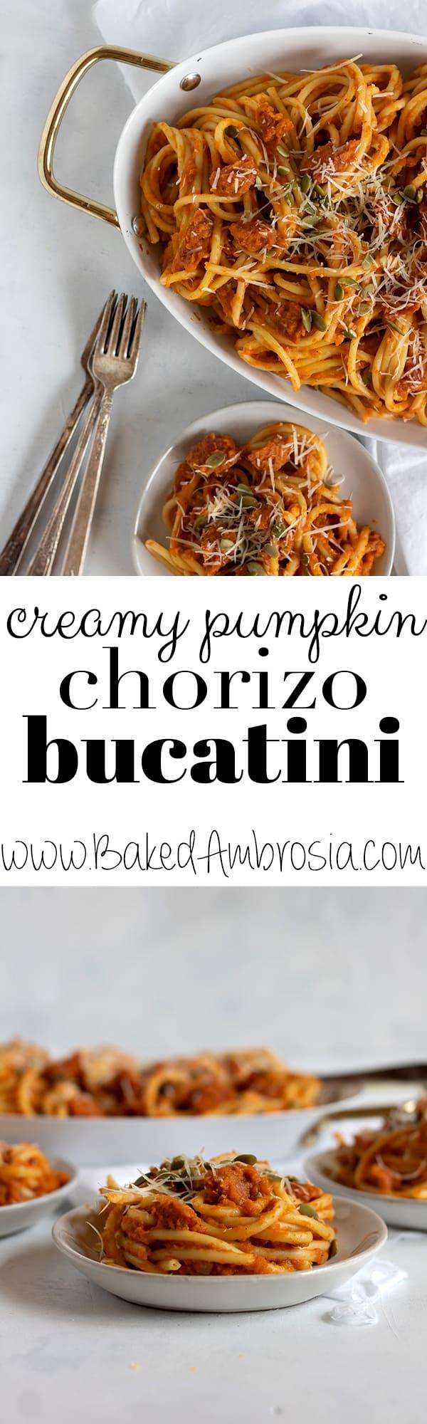 Creamy Pumpkin Chorizo Bucatini