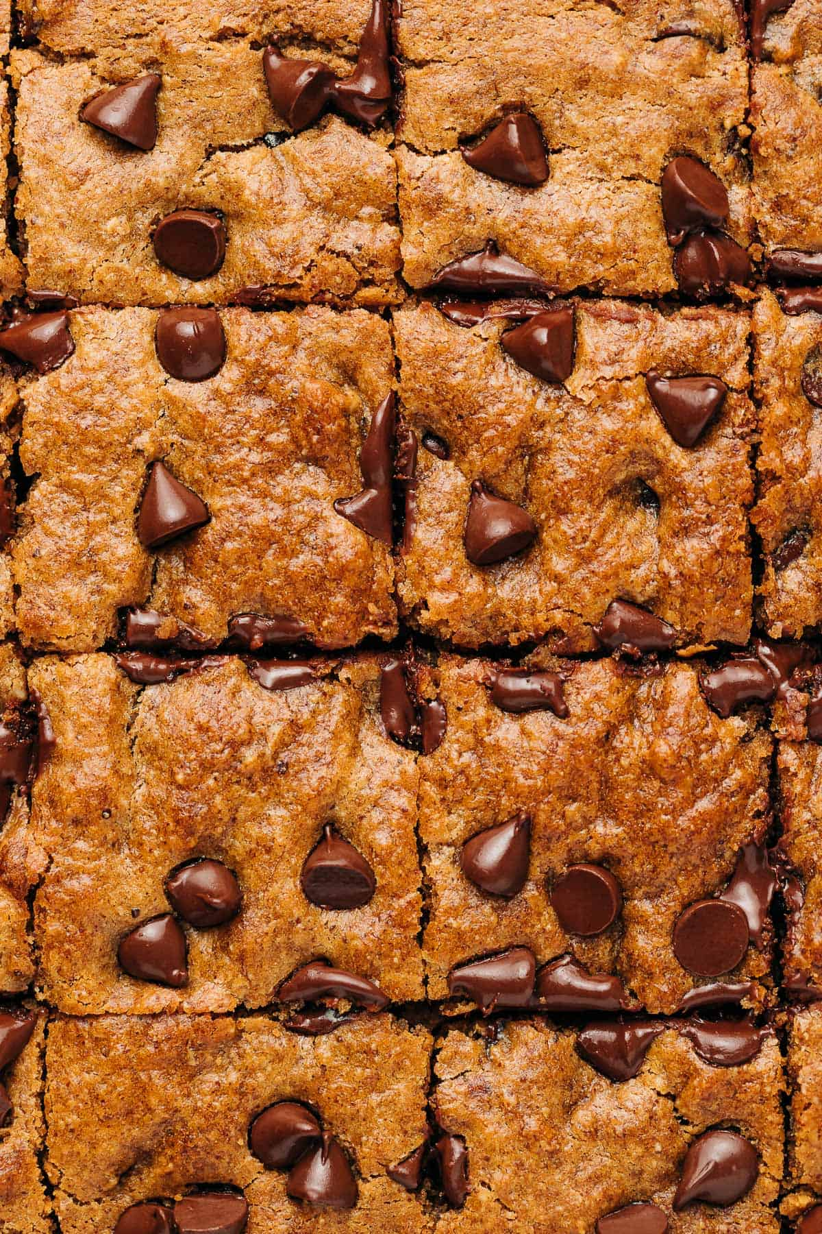Chocolate chip banana bread cut into squares.